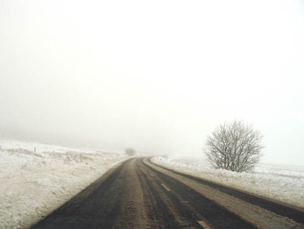Morning mist on a snowy road.