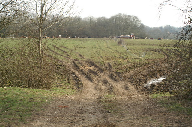 Farmland south of Bunny Lane