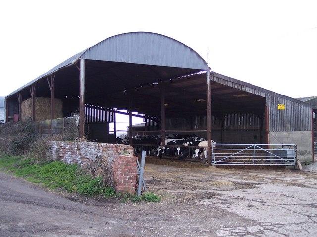 The Farm, Overton