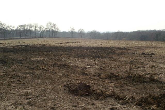 Farmland east of Fairbourne Lake