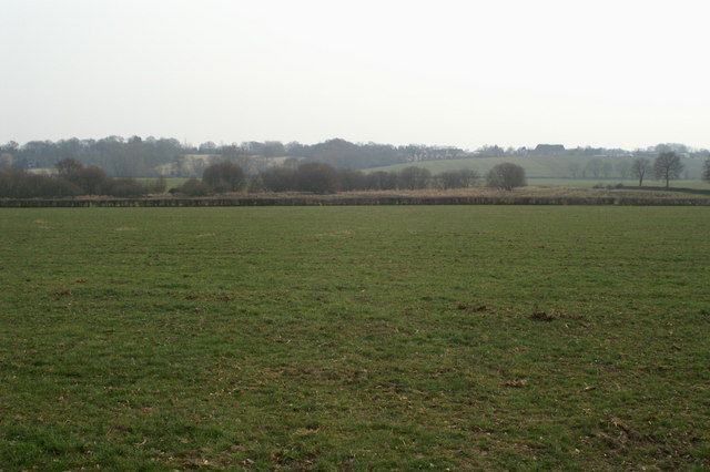 Farmland south of Kiln Lane, Braishfield