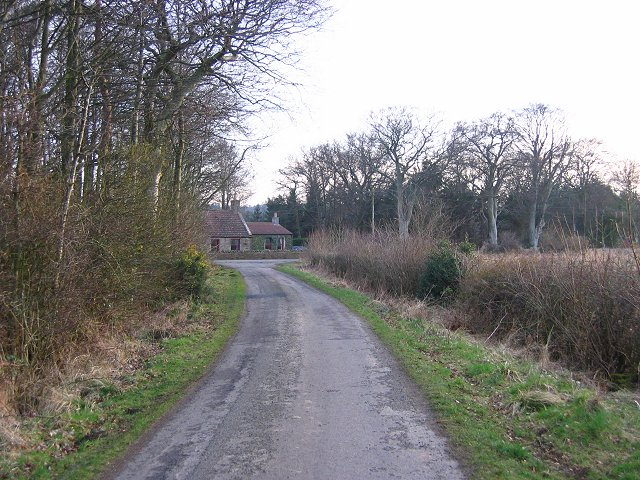 Road near Renton Hall.