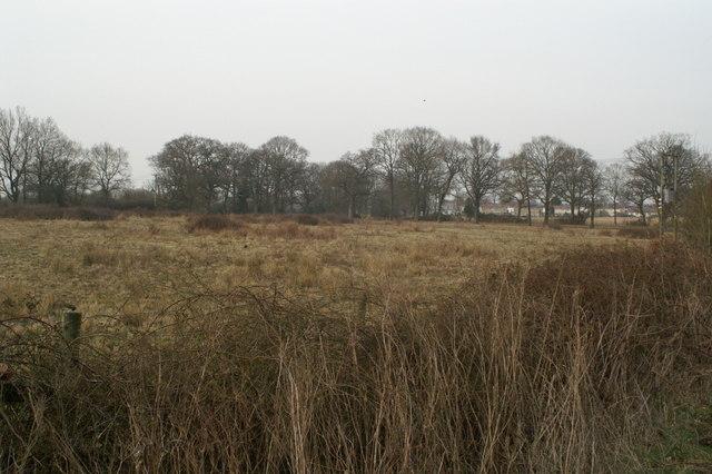 Fields south of Braishfield