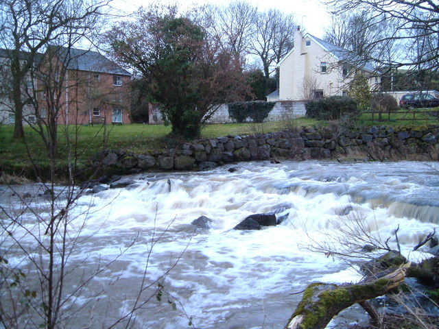 Weir on Creedy at Half Moon Village