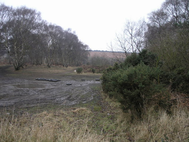 Forest and Spoil Heap