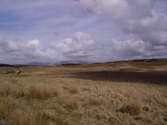 Near Swarther Plantation