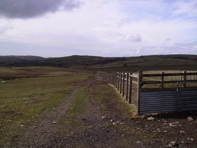 Sheep Pens Shawrigg Hill