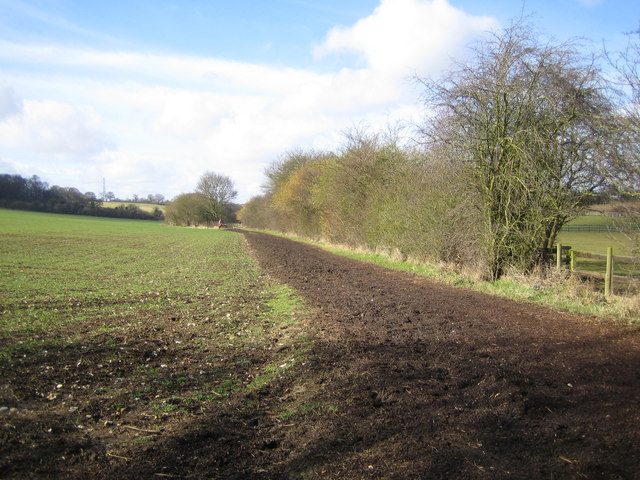 Flamstead: Bridleway between Delmerend Lane and Trowley Bottom