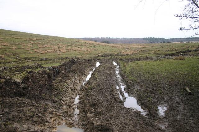 Damaged Land at Long Rigg