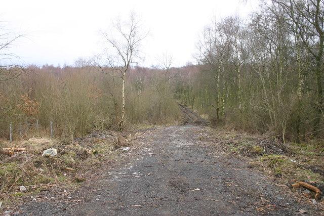 Entrance to Hoff Lunn Wood