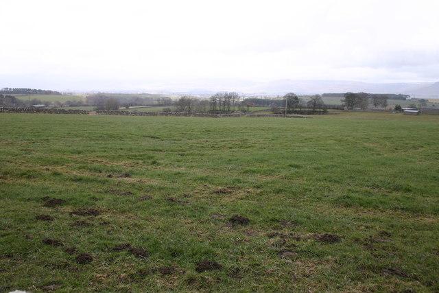 Long Moor, Gt Asby