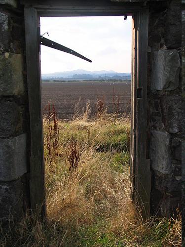 distant hedge line