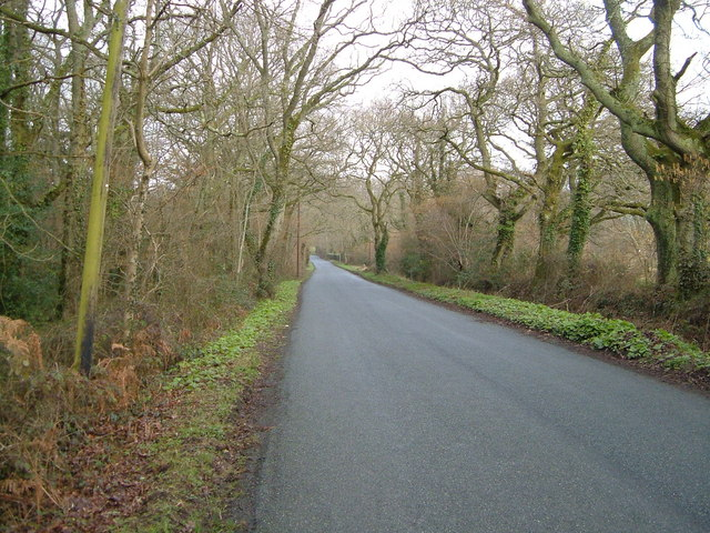 The road past Dunley House