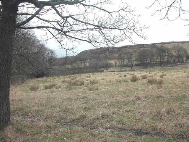 Dearden Moor