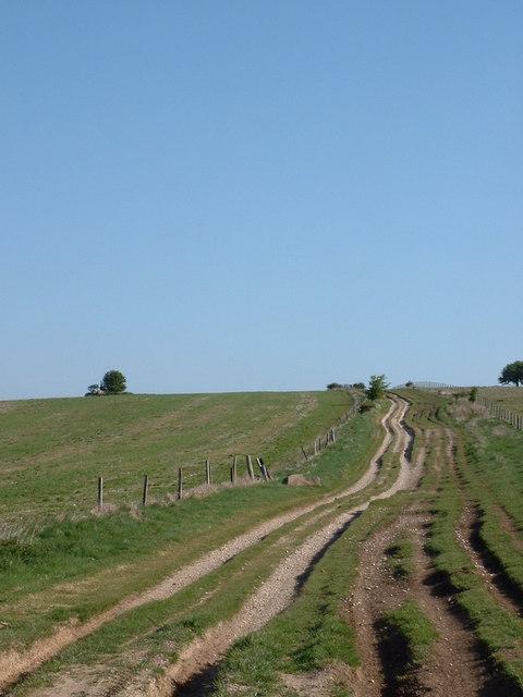 The Ridgeway above Avebury