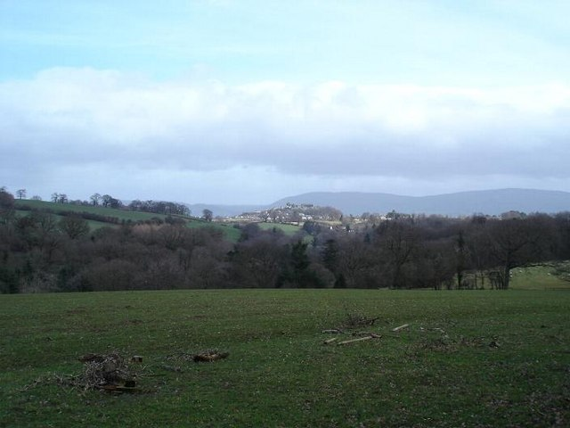 Coed Acas fields and view
