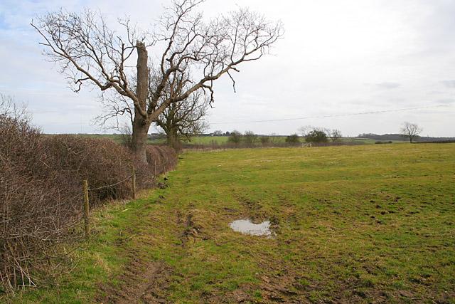 Farmland near Scalford