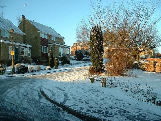 A snowy Cheviot Way, Upper Hopton