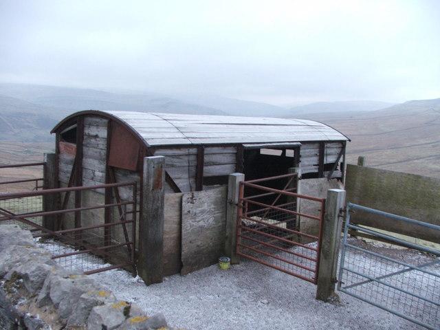 Goods van used as livestock shelter