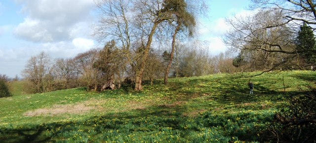 West Meadow Warley Place