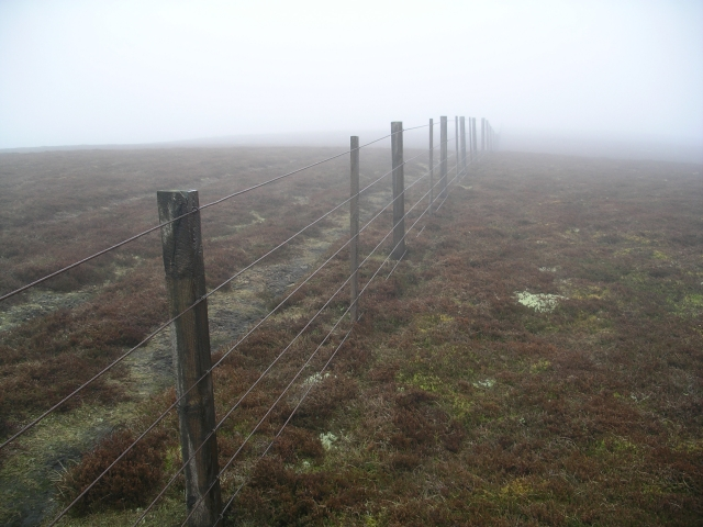 Fence, Strummeadow Hill