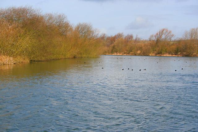 Priory Lakes, near Kirby Bellars