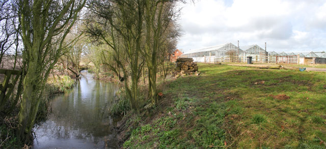 Mill Nursery and Garden Centre