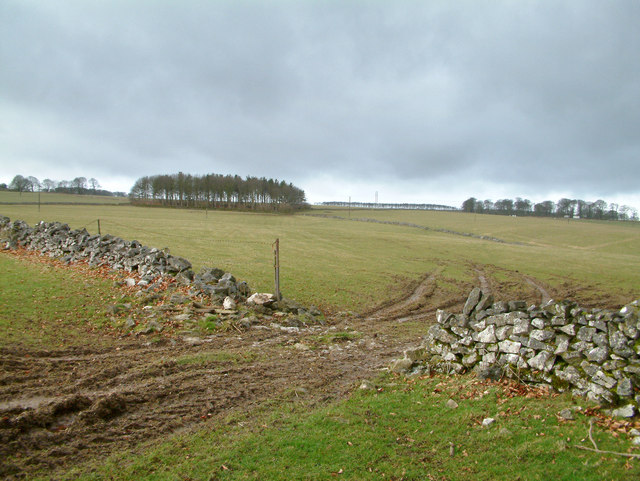 Countryside near Middleton by Youlgreave.