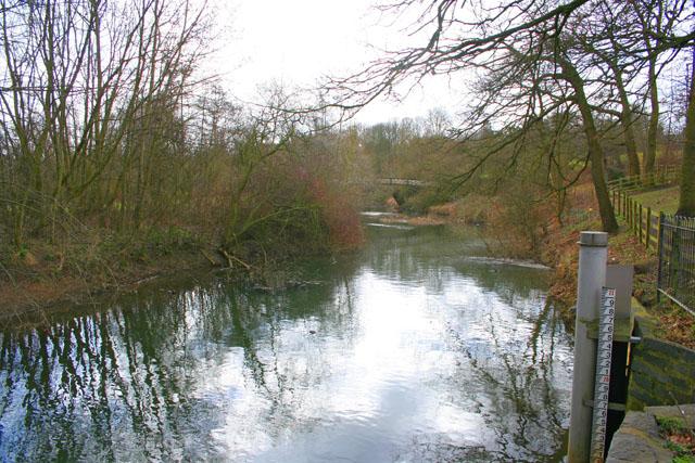 River Eye, Melton Mowbray