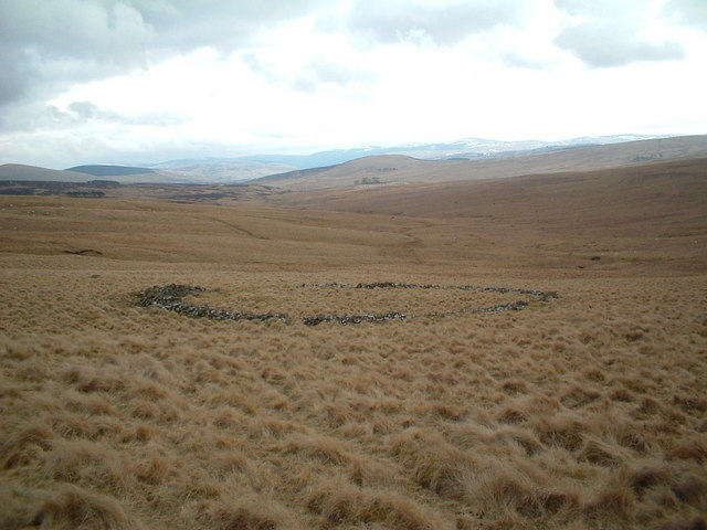 Disused sheepfold near Rough Knowe