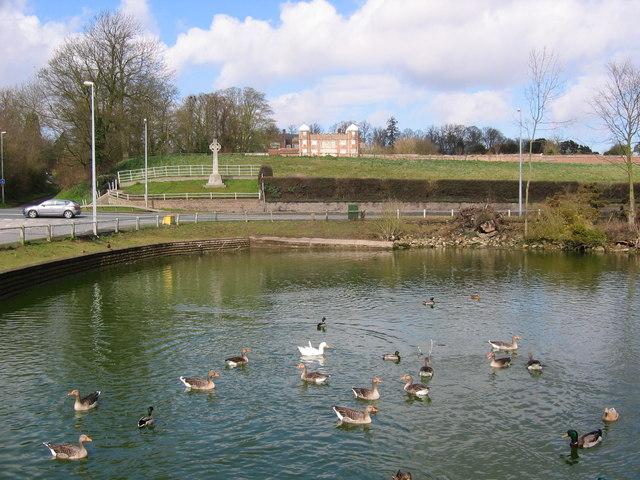 Burton Agnes Duck Pond