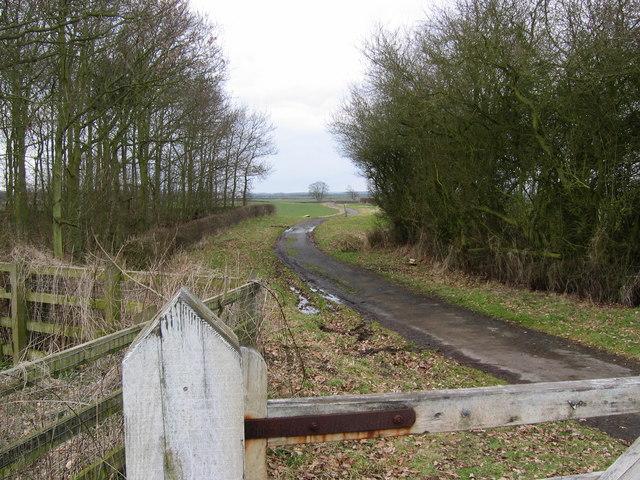 Track to Harpham