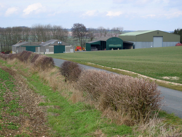 Tuft Hill Farm
