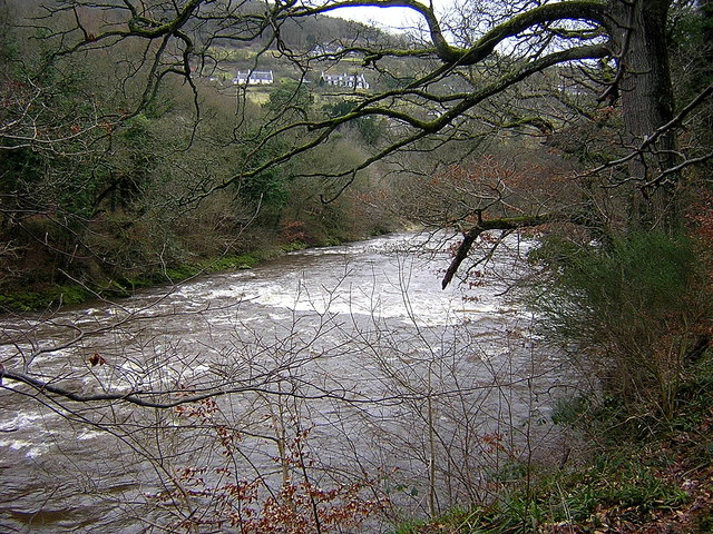 Rapids Near Hazelbank