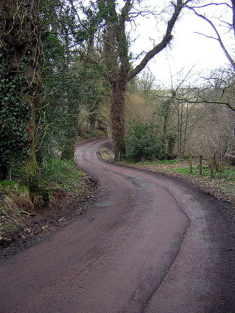 Winding Road Near Crossford