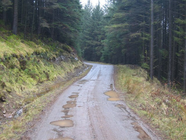 Forest track above Loch Eynort