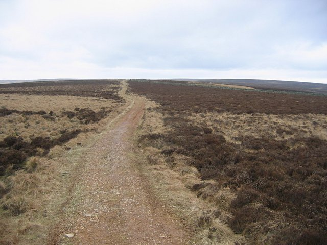 Southern Upland Way, Twin Law.