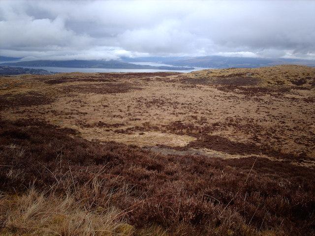 Burnhead Moor