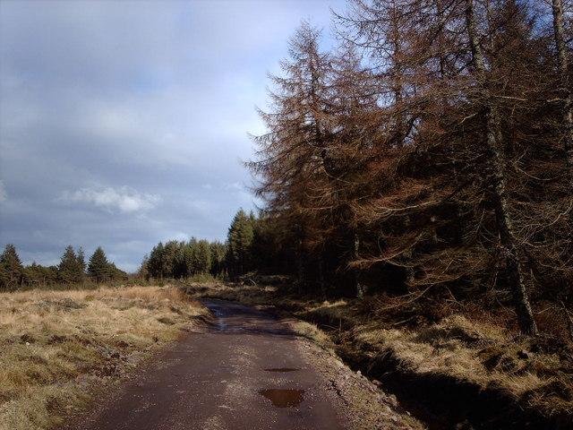 Track Leading To Garshangan
