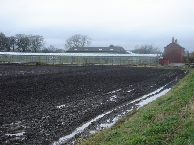 Naptha Farm