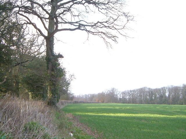 View near Farringdon House