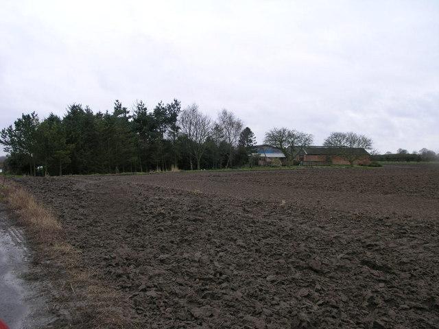 Readingate Farm