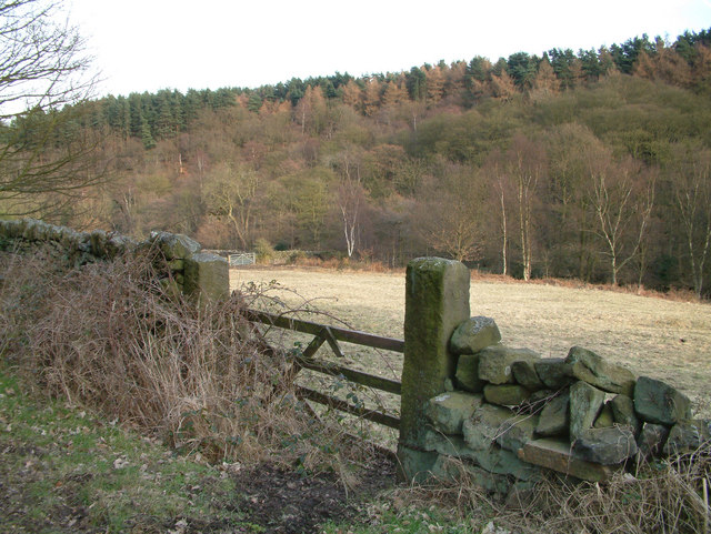 Near Holymoorside