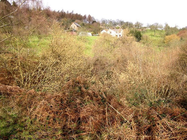 Edge Hills, Forest of Dean