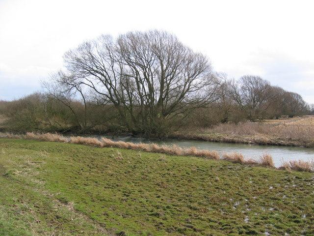 River Hull at TA050443