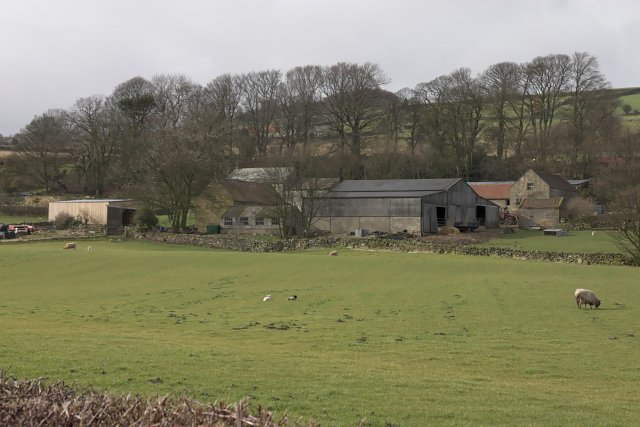 Lealholm Lawns Farm