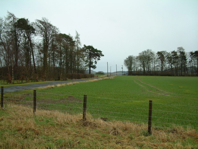 Hill of Errol Farm Road