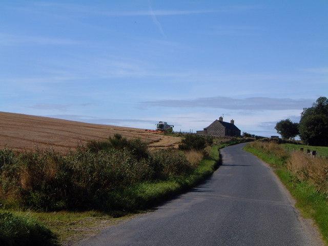 Aberdeenshire Harvest, Udny