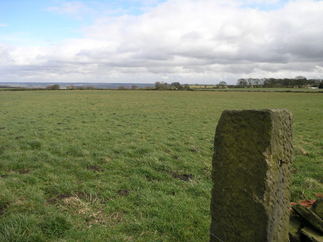 Gatepost and Field