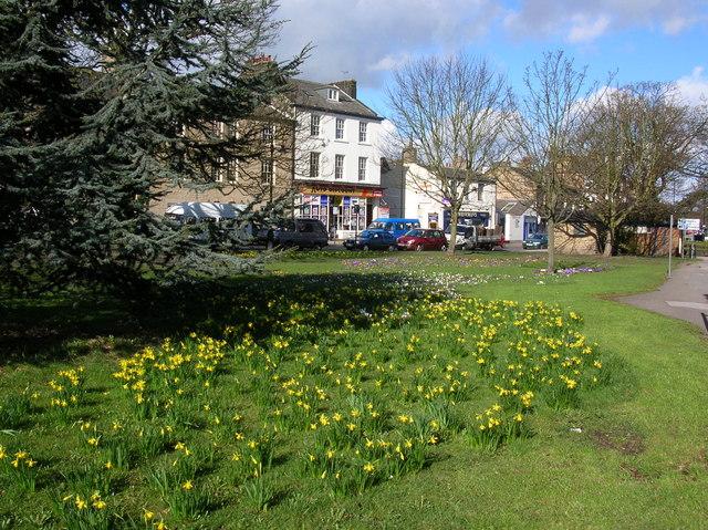 Spring flowers - Skipton Road